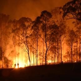 Increasing Your Resilience to Bushfire